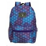 "17"" Eaglesport Cloud Backpack $4.75 Each"