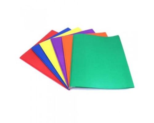 2 Pocket Folder W / Prongs $0.24 Each