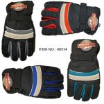 Adult Ski Gloves $2.59 Each.