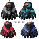 Ladies Ski Gloves $2.59 Each.